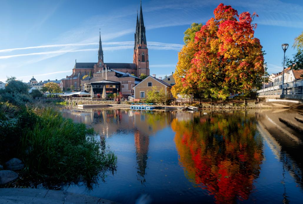 Säljare Uppsala